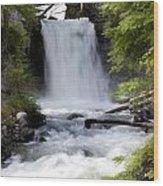 Crandel Creek Falls Wood Print