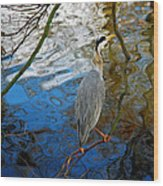 Crane Perching 1 Wood Print by John Magnet Bell