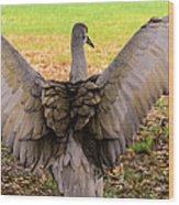 Crane Spreading Wings Wood Print
