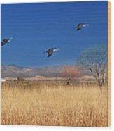 Cranes In Flight Wood Print