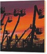 Cranes Wood Print by Lynda Jeffers