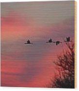 Cranes On A Dusky Sky Wood Print