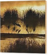Cranes On Golden Pond Wood Print