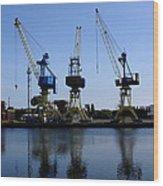 Cranes On The River Bank Wood Print