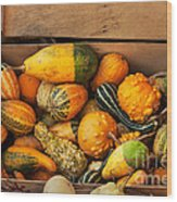 Crate Filled With Pumpkins And Gourts Wood Print