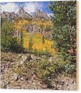 Crater Lake Trail Wood Print