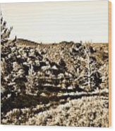 Craters Of The Moon1 Wood Print