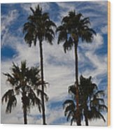 Crazy Cloud Palms Wood Print