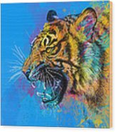 Crazy Tiger Wood Print by Olga Shvartsur