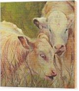 Cream And Sugar, Cows  Wood Print
