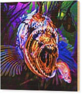 Creatures Of The Deep - Fear No Fish 5d24799 Square Wood Print