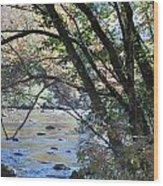Creek 2 Wood Print