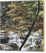 Creek 8 Wood Print