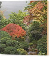 Creek At Japanese Garden In The Fall Wood Print