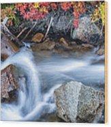 Creek At North Lake Ca_1 Wood Print