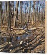 Creek At Woodland Park Wood Print