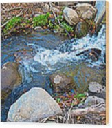 Creek Entering Andreas Canyon In Indian Canyons-ca Wood Print