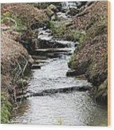 Creek In Alabama Wood Print