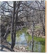Creek In North Texas Wood Print