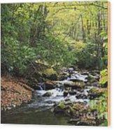 Creek In The Woods Wood Print