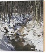 Creek In Winter Wood Print