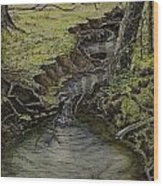 Creek  Wood Print
