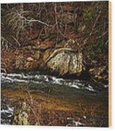 Creek Wood Print by Mario Celzner