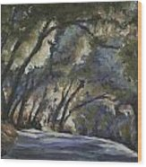 Creek Road Oaks Wood Print