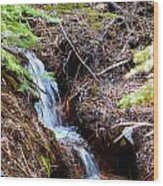 Creeks Fall Wood Print