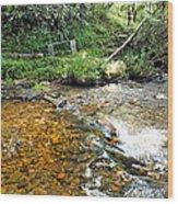 Creekside 4 Wood Print
