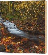 Creekside Colors Wood Print