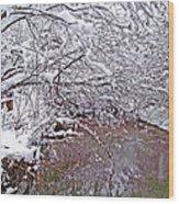 Creekside In The Snow 2 Wood Print