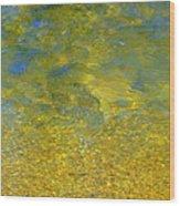 Creekwater Abstract Wood Print