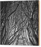 Creepy Dark Hedges Wood Print
