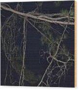 Creepy Tree Wood Print