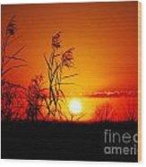 Creole Trail Sunset Wood Print