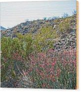 Creosote And Chuparosa On Henderson Trail In Santa Rosa-san Jacinto Nmon-ca Wood Print