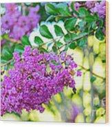 Crepe Myrtle Tree By Kaye Menner Wood Print