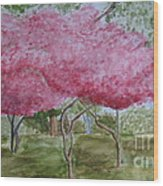 Crepe Myrtles Wood Print by Katie Spicuzza