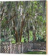 Crepe Myrtles Of Middleton Place Wood Print