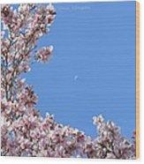 Crescent Around Crescent Wood Print