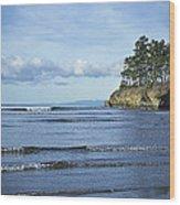 Crescent Bay #2 Wood Print