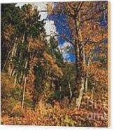 Crescent Colors Wood Print