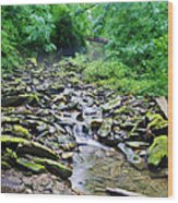 Cresheim Creek Wood Print