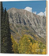 Crested Butte Colorado Wood Print