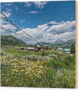 Crested Butte Farm House Wood Print