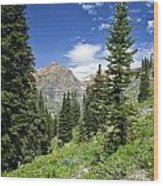 Crested Butte Flowers Wood Print