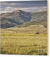 Crested Butte Ranch Wood Print