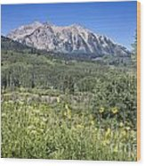 Crested Butte Scenery Wood Print