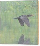 Crested Cormorant Wood Print